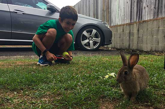 Jake and Bunny